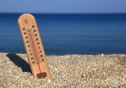 Консумирайте 5 натурални продукта за разхлаждане през летните дни - изображение