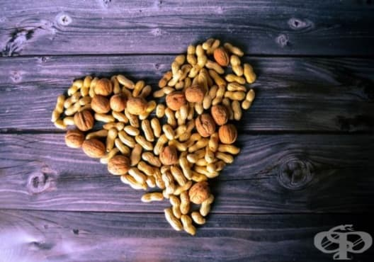 Консумирайте 5 вида ядки, за да подобрите здравето на сърцето - изображение
