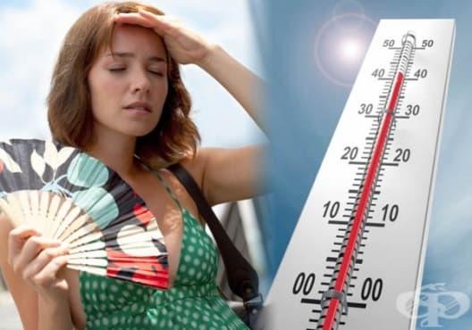 Използвайте 8 естествени средства срещу топлинен удар  - изображение