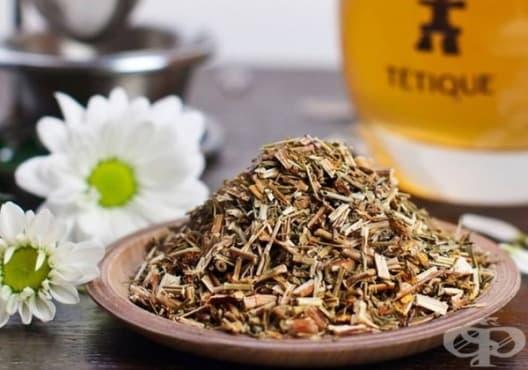 Консумирайте чай от жълт кантарион срещу хипотиреоидизъм - изображение