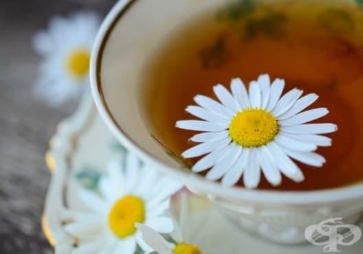Консумирайте чай от лайка срещу киселини и гастрит - изображение