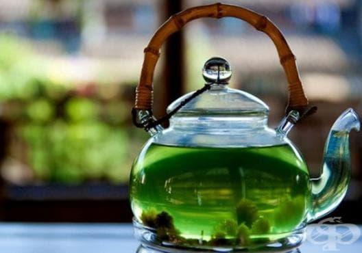 Консумирайте чай от маруля срещу болки в стомаха - изображение