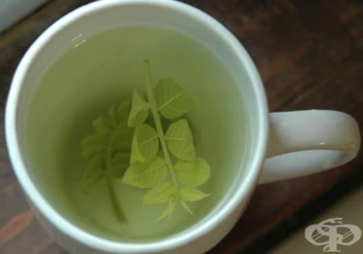 Консумирайте чай от орехови листа срещу стомашно-чревни инфекции - изображение