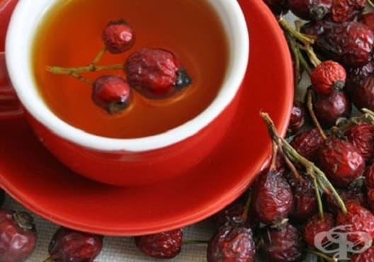 Консумирайте чай от шипка против уринарна инфекция - изображение