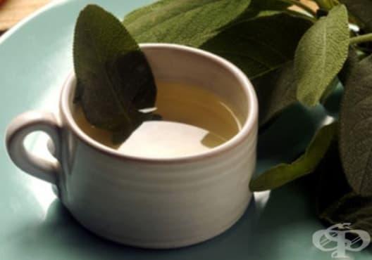 Консумирайте градински чай срещу ужилване от пчела - изображение