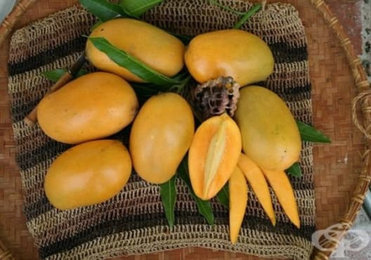 Консумирайте мед и манго против хемороиди - изображение