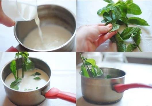 Консумирайте прясно мляко с мента срещу чревни паразити - изображение