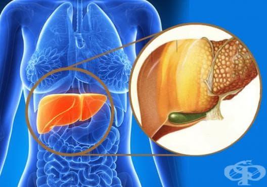 Консумирайте сок от репички или чай от бял трън срещу чернодробна стеатоза - изображение