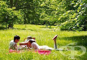 Контактувайте с природата за здраве, спокойствие и бистър ум - изображение