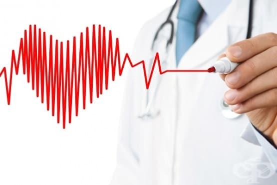 Как да се храним при високо кръвно налягане - изображение