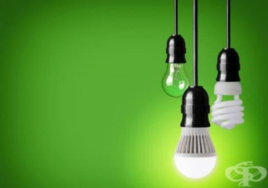 Използвайте LED крушки, за да не привличате комарите в дома си - изображение