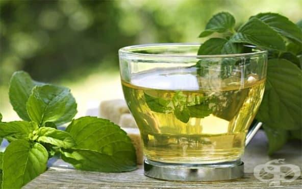 Облекчете подуването и дискомфорта в стомаха с чай от мента и магданоз - изображение