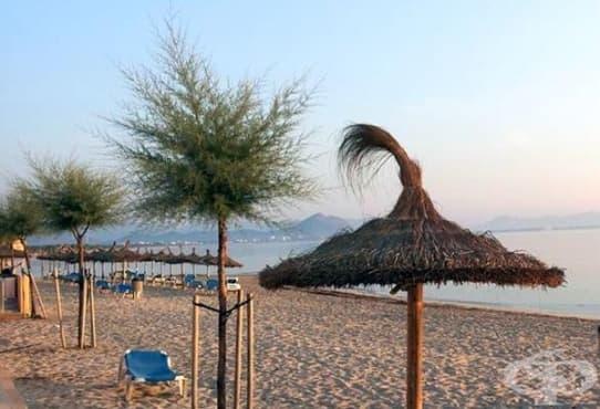 Заличете целулита с морски пясък  - изображение