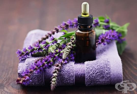 Прогонете стреса с етерично масло от салвия - изображение