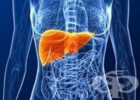 Налагайте торбичка с ленено семе срещу болки в черния дроб - изображение