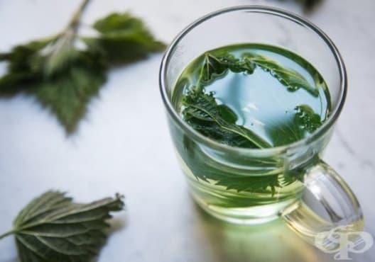 Намалете пикочната киселина в ставите с чай от коприва - изображение