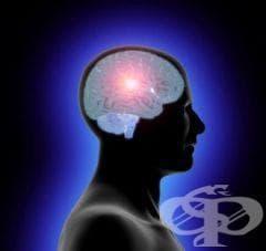 Намалете риска от инсулт като контролирате теглото и кръвното си налягане - изображение