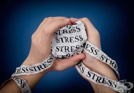 Намалете стреса с 10 естествени средства - изображение