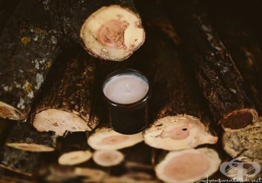 Направете си ароматна свещ от мента, какао и ванилия - изображение