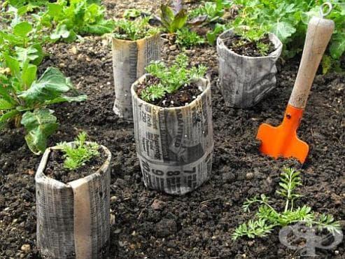 Направете си екологични саксии от рециклирана хартия - изображение