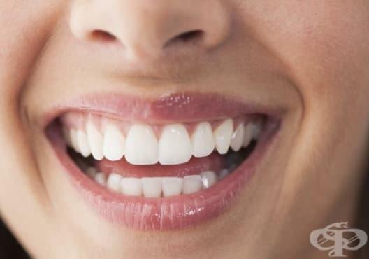 Направете си избелваща паста за зъби от женско биле, активен въглен и портокал - изображение