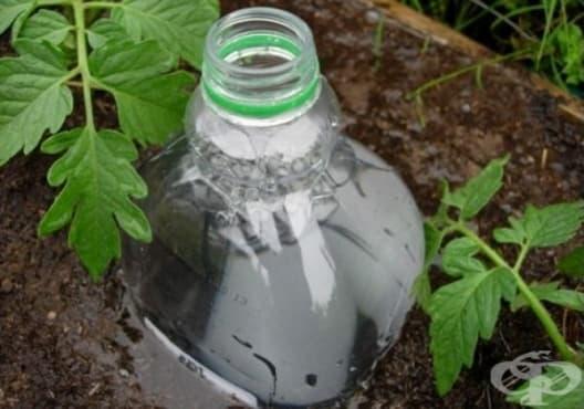 Направете си капкова напоителна система от пластмасови бутилки - изображение
