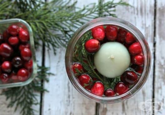 Направете си коледен свещник от кедър и червена боровинка - изображение