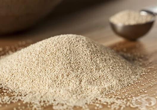 Направете си подмладяваща маска от кисело мляко, бирена мая и пшеничен зародиш - изображение