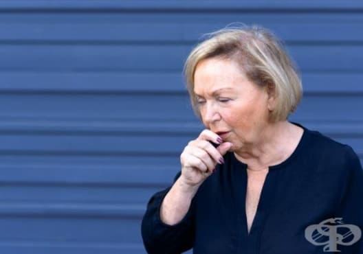 Направете си сироп против кашлица от слез, лайка и джинджифил - изображение