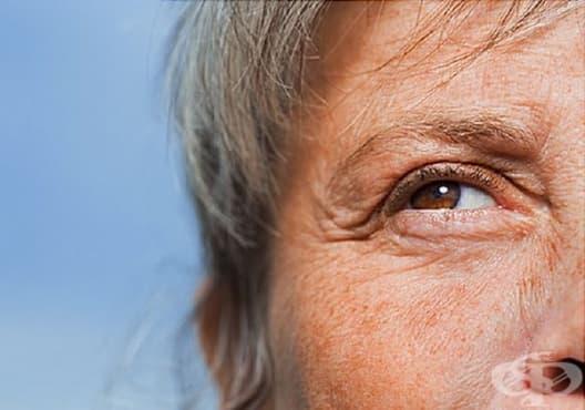 Направете тест с решетката на Амслер, за да разберете дали страдате от макулна дегенерация - изображение