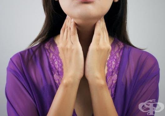 Насърчете функцията на щитовидната жлеза с 8 вида храни - изображение