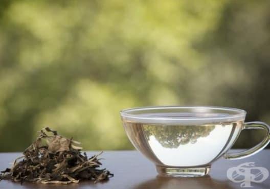 Насърчете изгарянето на излишни мазнини с бял чай - изображение