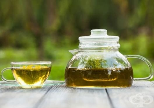 Насърчете изгарянето на излишни мазнини с чай от копър - изображение