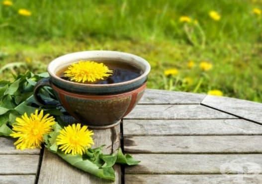Насърчете изгарянето на излишни мазнини с чай от мента и глухарче - изображение