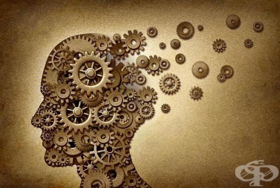 Насърчете мозъчния кръвоток чрез 5 ефективни начина - изображение