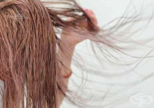 Насърчете растежа на косата с рицин, розмарин и лавандула - изображение
