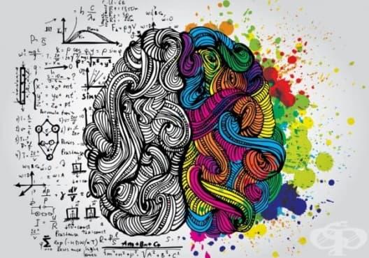 Научете 20 невероятни психологически факта, способни да променят начина, по който виждате света - изображение