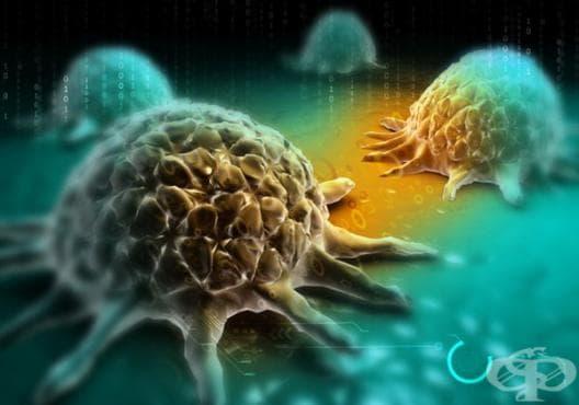 Научете 20 важни неща за профилактика и лечение на рак /1 част/ - изображение