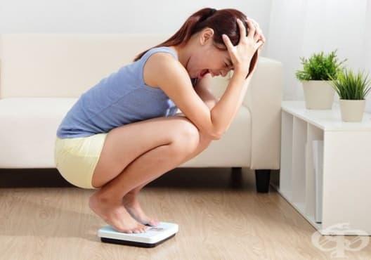 Научете 5 причини, поради които не може да свалите килограми - изображение