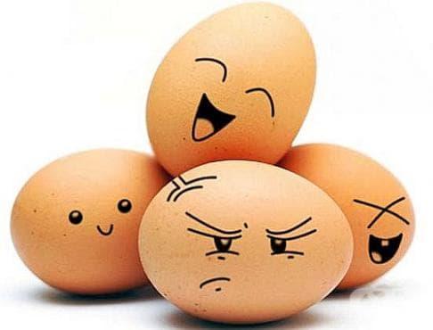 Научете 5 удивителни истини за яйцата, които ще ви бъдат полезни - изображение