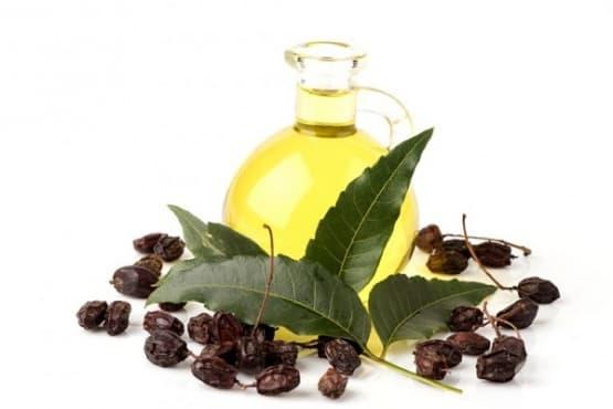 Използвайте масло от нийм срещу стареене на кожата - изображение