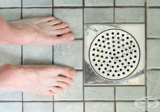 Никога не изхвърляйте тези 10 продукта в канализацията - изображение