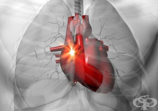 Нормализирайте сърдечния ритъм за по-малко от минута чрез 8 начина - изображение