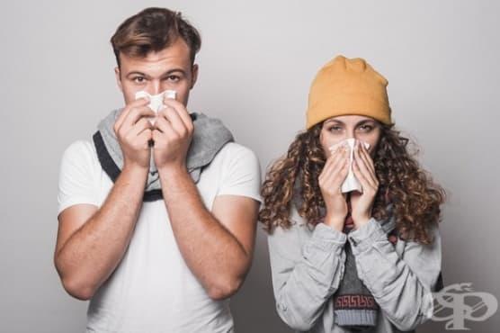 Отпушете запушения нос по 6 начина - изображение