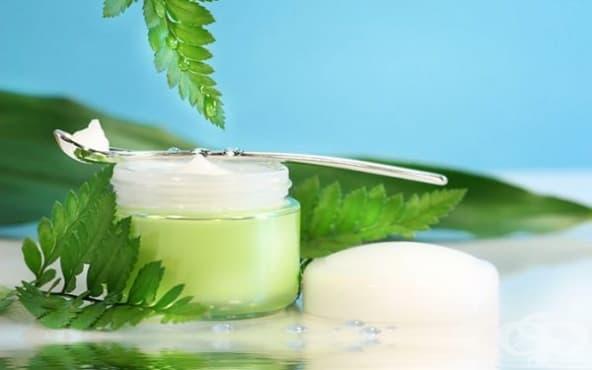 Заличете бръчките по лицето с нощен крем от зелен чай и алое вера - изображение