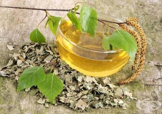 Облекчете цистита с чай от листа на бреза - изображение