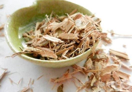 Облекчете главоболието с чай от върбова кора - изображение