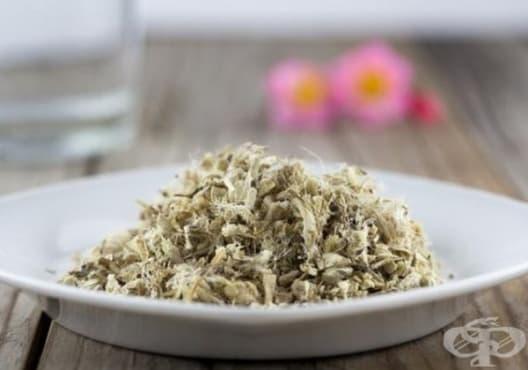 Облекчете възпаленото гърло с чай от бяла ружа - изображение