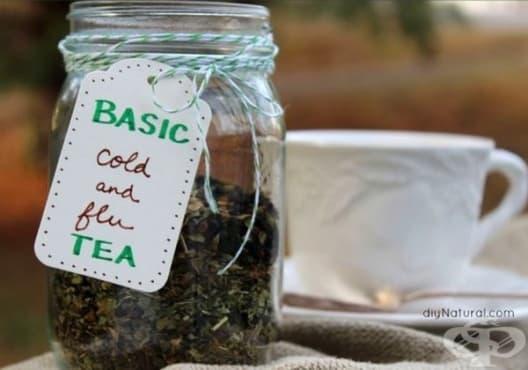 Облекчете грипа и настинката с чай от бъз, мента, маточина и ехинацея - изображение
