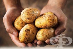 Ограничете картофите, ако имате наднормено тегло или диабет - изображение
